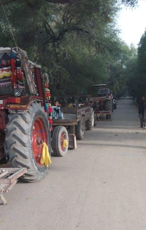 Anti-Encroachment Operation in Miani Forest Fails - Photo Courtesy Sindh Information-1