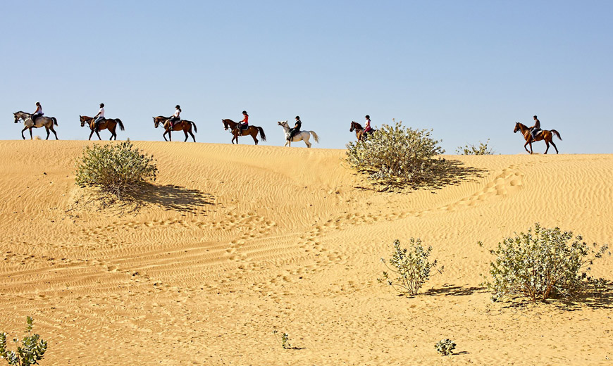 A Mosaic of Nature ……The Topography of Thar