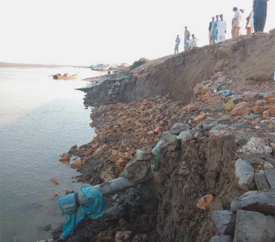 Sea Intrusion Khharochhan on the verge of disappearance - Sindh Courier-3