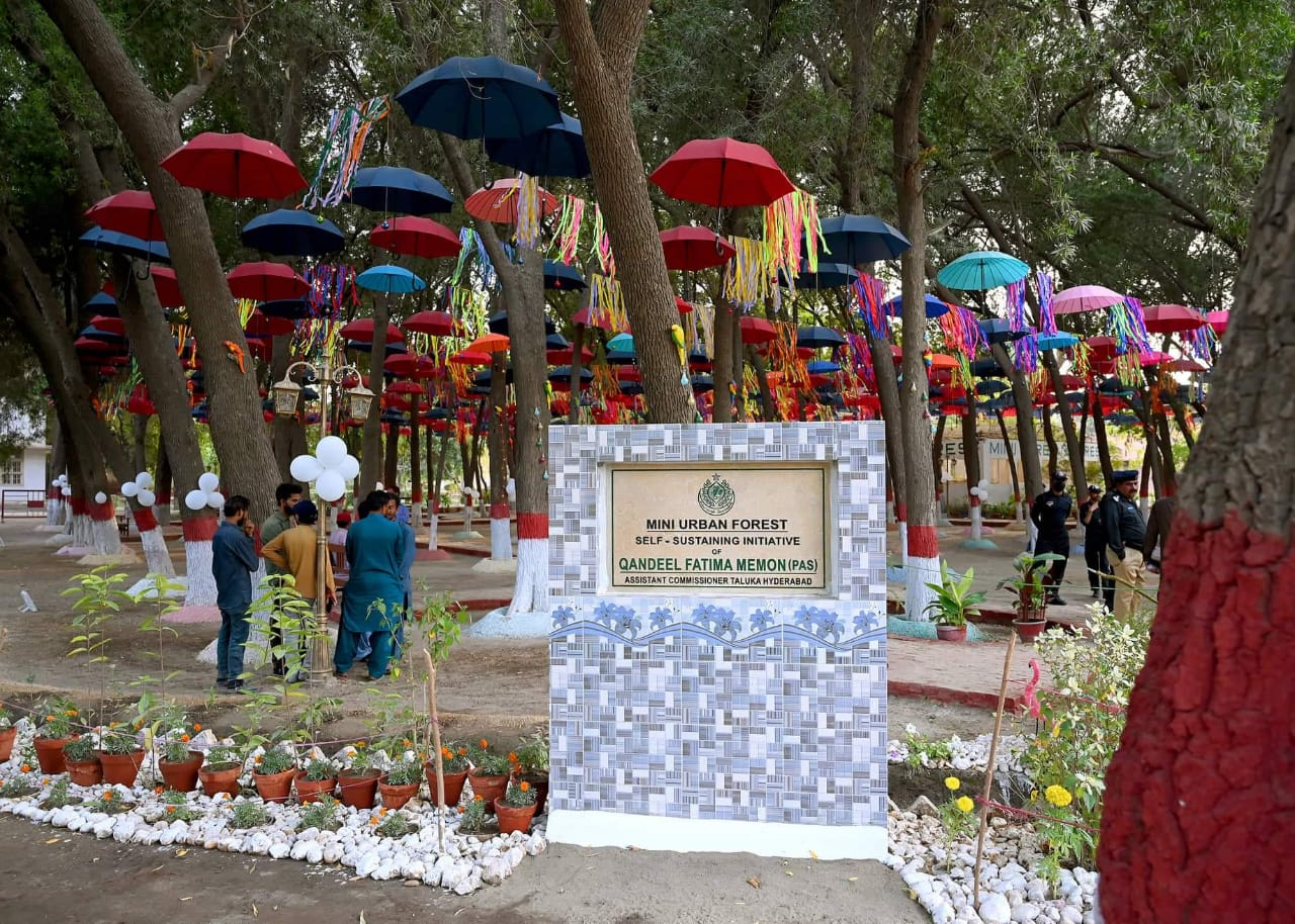First ever Mini Urban Forest established in Tando Jam - Sindh Courier-3
