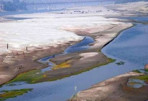 Listen to the resounding cry of dying Indus Delta -2