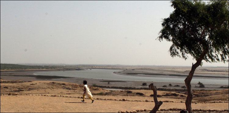 Sea Intrusion and Vanishing Mangroves Posing Threat to Existence of Indus Delta - Sindh Courier