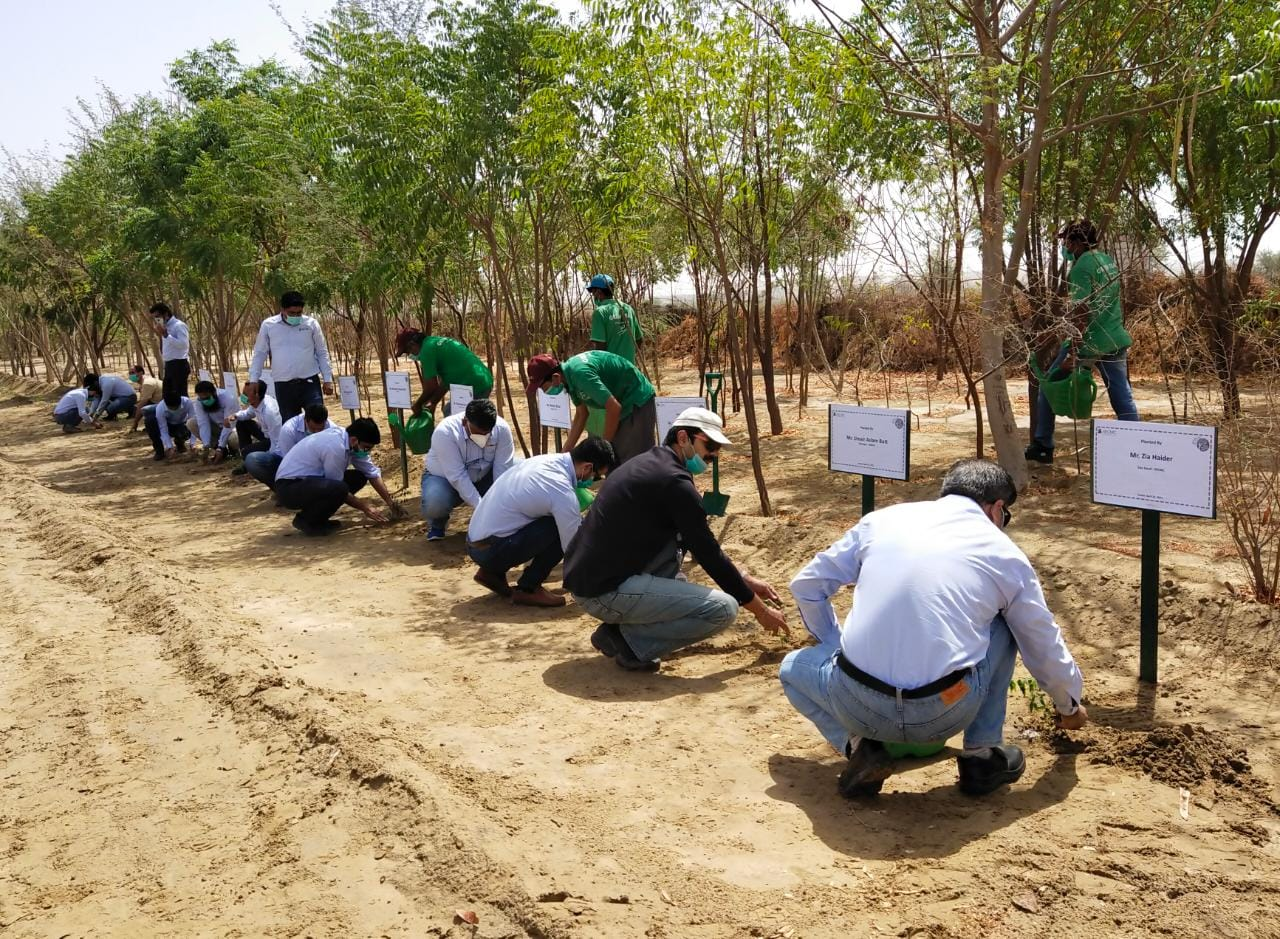 Thar Million Tree Initiative Plants 910,000 Trees- Sindh Courier