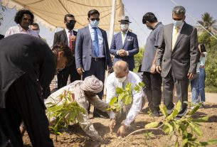U.S. – Pakistan Friendship Garden established in Karachi- Photo by US Consulate- Sindh Courier-2