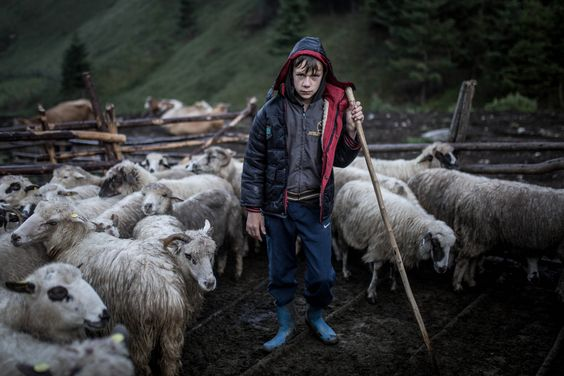 Photo of Humaneness – A Short Story from Uzbekistan