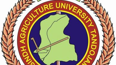 Photo of Sindh Agriculture University resumes on-campus academic activities