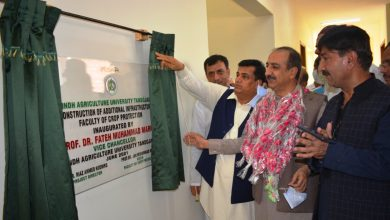 Photo of Sindh Agriculture University's Crop Protection Faculty gets new building