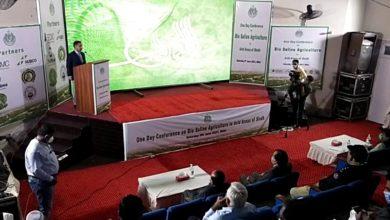 Photo of Sindh govt. to formulate bio-saline agriculture plan
