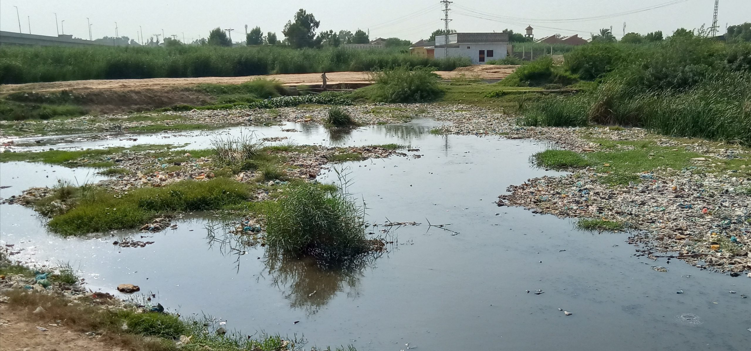 Water pollution continues posing threat to human life in Sindh- Sindh Courier-6