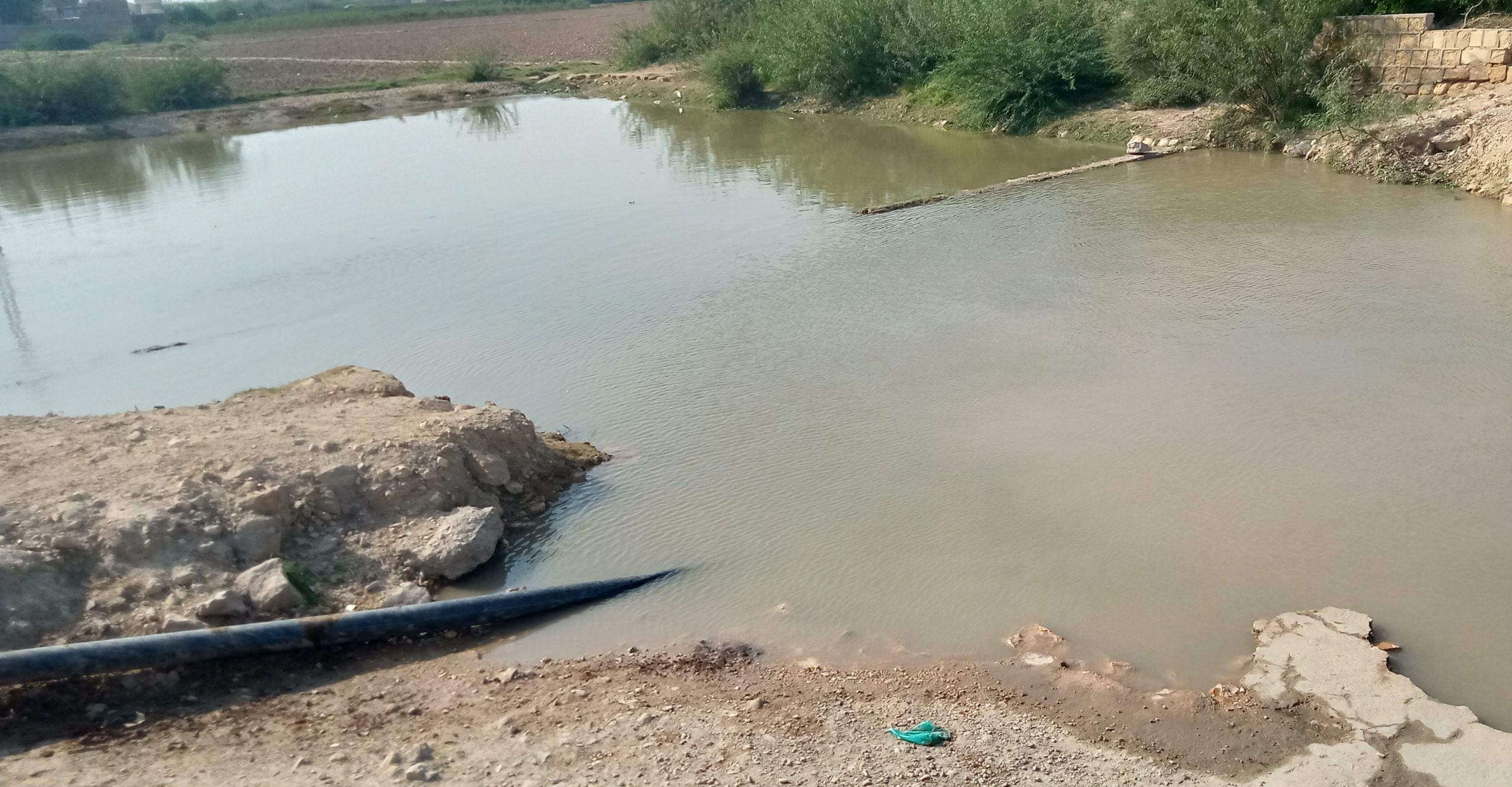 Water pollution continues posing threat to human life in Sindh- Sindh Courier-7