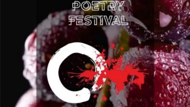 Kosovo-Poetry Festival-Sindh Courier-