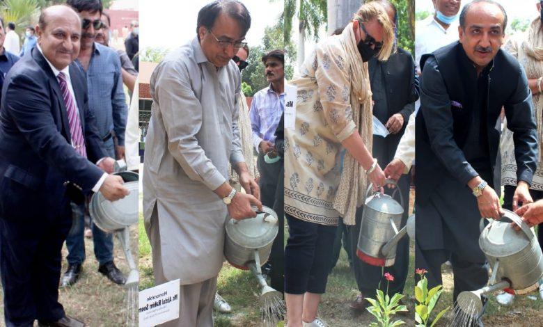 Photo of SAU Tando Jam launches Mega Tree Plantation Drive