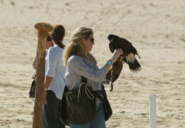 Photo of Women breaking stereotypes with falconry