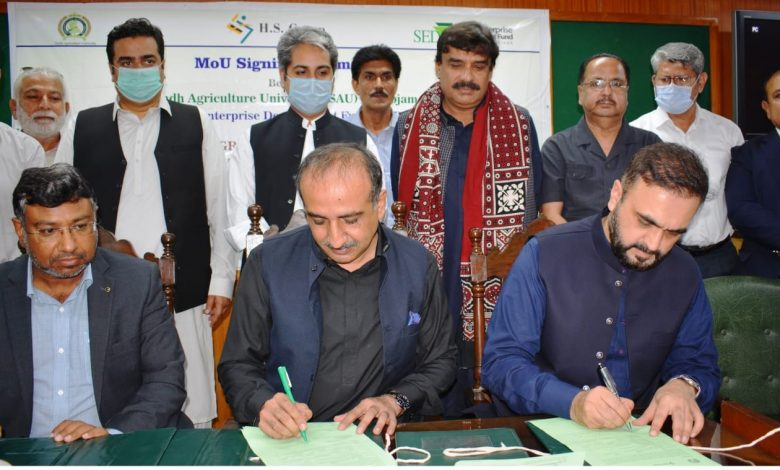 Photo of MoU signed for Onion Seed Research