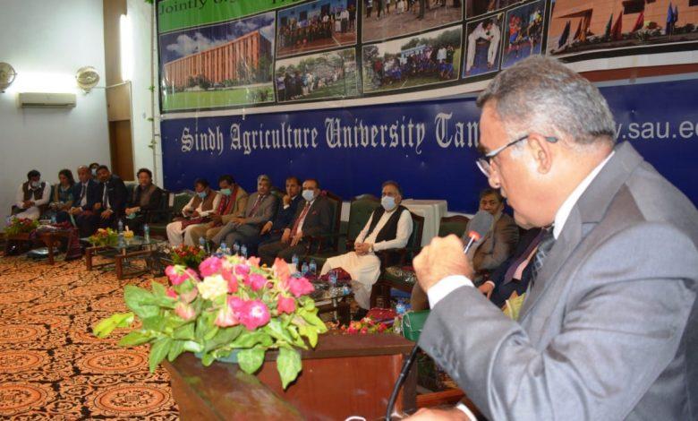 Sindh-Sports-Board-Secretary-Imtiaz-Shah-Tandojam-Sindh-Courier